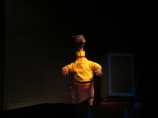 This is the best picture I could get of Figment.